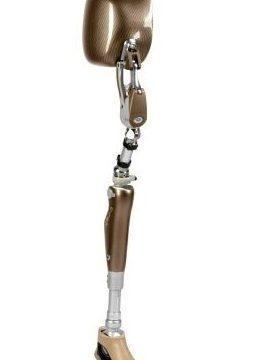 prothèse mb inf